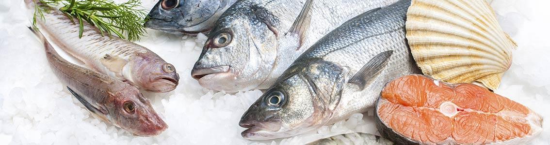рыба оптом москва и московская область