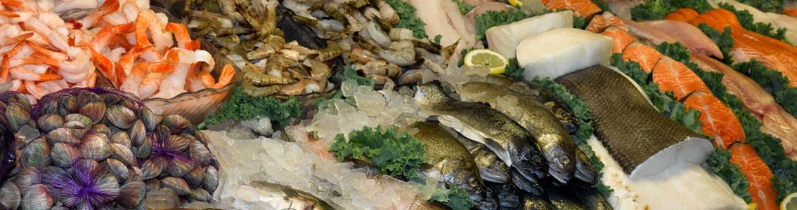 купить морепродукты оптом